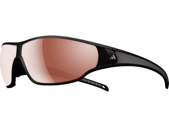 adidas Tycane L Glasses matt black/darkgrey
